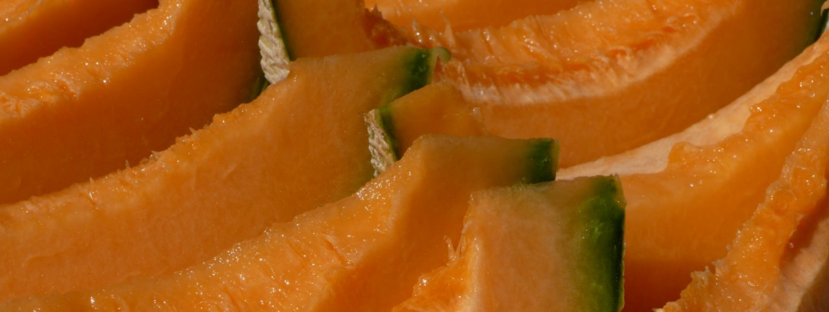 Festa del Melone